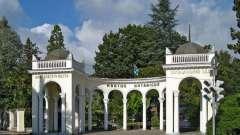 Сухумский ботанический сад: зеленое сердце столицы абхазии