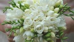 Свадебный букет из фрезий подчеркнет красоту невесты