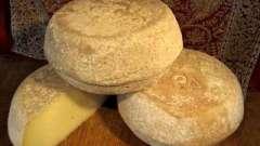 Сыр в домашних условиях за два-три часа