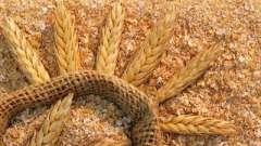 Такие полезные пшеничные отруби