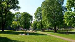 Терлецкий парк - сказочный уголок столицы