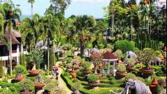 Тропический парк «нонг-нуч», таиланд: отзывы туристов