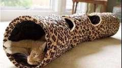 Туннель для кошки - необходимость или игра?