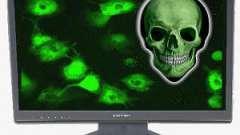 Удаление вирусов: как вылечить компьютерную простуду