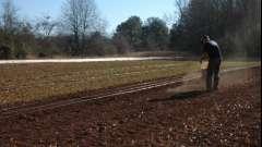 Удобрение при посадке картофеля. Выращивание картофеля. Лучшее удобрение для картофеля при посадке