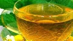 В каких случаях употребляют растительное мочегонное? Травы: назначение и применение