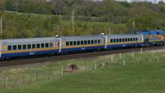 Вагоны: типы вагонов. Классификация вагонов в поездах ржд