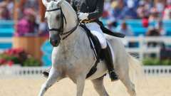 Виды конного спорта – многообразие и великолепие верховой езды