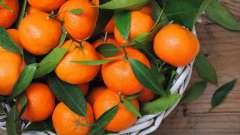 Витамины в мандаринах: перечень, полезные свойства, пищевая ценность и противопоказания