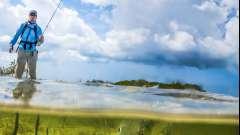 Водохранилище волгоградское: рыбалка