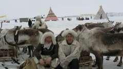 Восточная сибирь: климат, природа