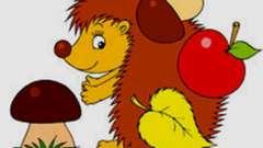 Загадка про ежика для детей не должна нести искажённую информацию!