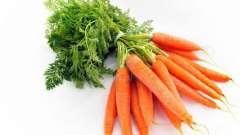 Загадки про морковку для детей. Идеи, как занять ребенка (для взрослых)