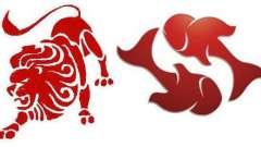 Женщина лев и мужчина рыбы: совместимость пары
