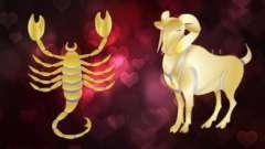 Женщины-овны и скорпионы-мужчины – совместимость