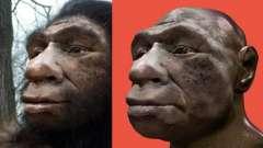 Жизнь древних людей. История древнего человека