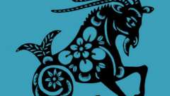 Зодиакальная характеристика: мужчина козерог-петух – какой он?